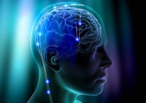 Zonas Criativas do Cerebro